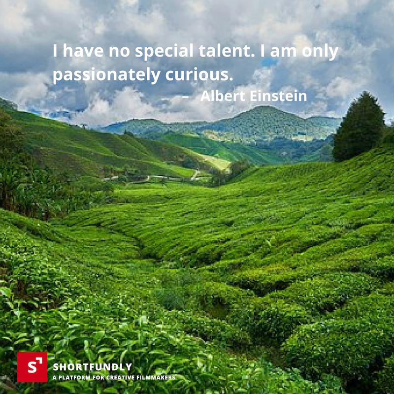 Top 6 Albert Einstein quotes