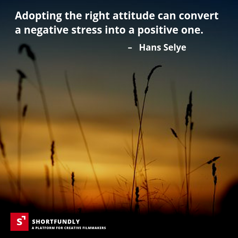 Top 6 Attitude Quotes